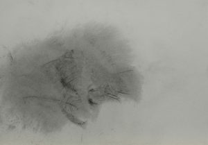 Bez názvu, 2009, uhel na papíře, 29,7x42cm