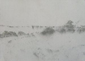 Křoví na poli, 2009, uhel na papíře, 29,7x42cm