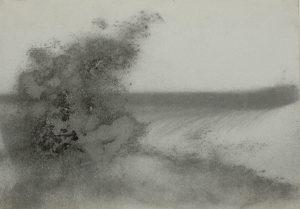 Křoví u louky, 2009, uhel na papíře, 29,7x42cm
