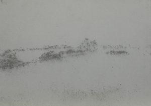 Křoví u pole, 2009, uhel na papíře, 29,7x42cm