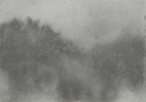 Mlha, ráno a les, 2009, uhel na papíře, 29,7x42cm