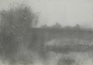 Mlhavá louka, 2009, uhel na papíře, 29,7x42cm
