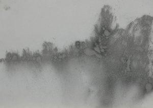 Mlhavé stromy, 2009, uhel na papíře, 29,7x42cm
