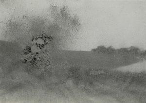 Velké křoví, 2009, uhel na papíře, 29,7x42cm