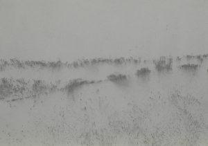 Vítr na poli, 2009, uhel na papíře, 29,7x42cm