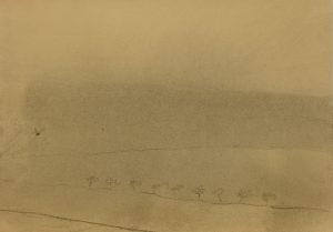 Zamlžené pole a stromy, 2009, uhel na papíře, 29,7x42cm