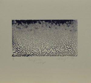 Krajina zebry, 2010, 22x25cm, Tisk z výšky ze suché barvy Náklad 6