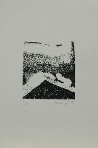 Za rohem, 2010, 35x25cm, Tisk z výšky z polystyrenu Náklad 8