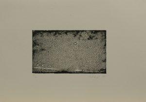 Zebří nebe, 2010, 24,5×34,5cm, Tisk z výšky ze suché barvy Náklad 4