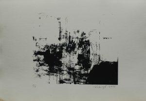 Akademie, 2013, 29×41,5cm, Sítotisk Náklad 6