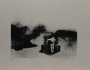 Myslitel, 2013, 29,5×38,5cm, Sítotisk Náklad 10