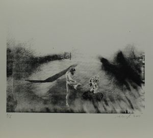 Studie rozkroku, 2013, 29,5×32,5cm, Sítotisk Náklad 6
