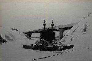 Múza hřbitovní flory, 2014, uhel na filcu, 100x150cm
